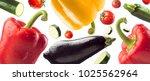 fresh healthy vegetables... | Shutterstock . vector #1025562964