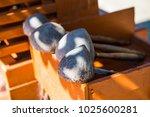 thai style dipper  thailand. | Shutterstock . vector #1025600281