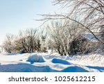 icicle tree in rural quebec... | Shutterstock . vector #1025612215