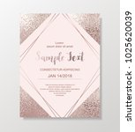 luxury card template with... | Shutterstock .eps vector #1025620039