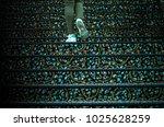 feet walking over the carpet... | Shutterstock . vector #1025628259