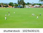 Small photo of Cricket Field Game