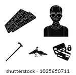 elderly men  tablets  pigeons ...   Shutterstock .eps vector #1025650711