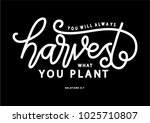 hand lettering you will always... | Shutterstock .eps vector #1025710807
