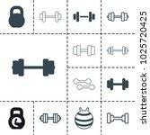 dumbbell icons. set of 13... | Shutterstock .eps vector #1025720425