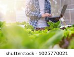 farmers are checking the... | Shutterstock . vector #1025770021