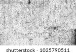 black and white texture of... | Shutterstock . vector #1025790511