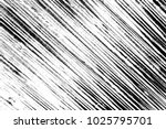 abstract background. monochrome ... | Shutterstock . vector #1025795701