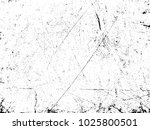 scratch grunge urban background.... | Shutterstock .eps vector #1025800501