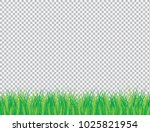 vector illustration for card... | Shutterstock .eps vector #1025821954
