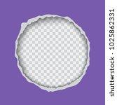 vector realistic illustration... | Shutterstock .eps vector #1025862331