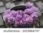 snowflowers beautiful bouquet  | Shutterstock . vector #1025866747