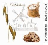 oat bakery vector set with...   Shutterstock .eps vector #1025891425