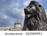 Lion In Trafalgar Square With...