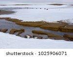 archipelago franz josef land ...   Shutterstock . vector #1025906071