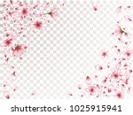 sophisticated peach or chinese... | Shutterstock .eps vector #1025915941