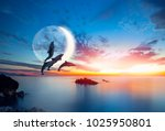 silhoutte of beautiful dolphin... | Shutterstock . vector #1025950801
