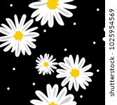 white daisies and white circle... | Shutterstock .eps vector #1025954569