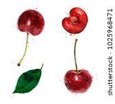 cherry on white background....   Shutterstock . vector #1025968471