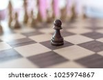 playing chess game | Shutterstock . vector #1025974867