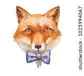 fox. watercolor illustration on ... | Shutterstock . vector #1025994067