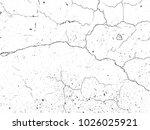 the cracks . grunge texture.  | Shutterstock .eps vector #1026025921