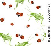 grasshoppers and ladybugs on a... | Shutterstock .eps vector #1026049414