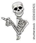 a skeleton cartoon character... | Shutterstock .eps vector #1026102421