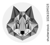 grey wolf in lowpoly style on... | Shutterstock .eps vector #1026109525