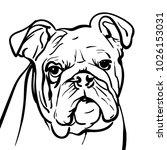 dog bulldog. outlines a sad... | Shutterstock .eps vector #1026153031