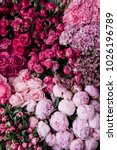 beautiful fresh blossoming...   Shutterstock . vector #1026196789
