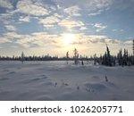 arctic winter landscape | Shutterstock . vector #1026205771