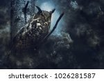 Stock photo  eagle owl in the fog 1026281587