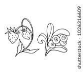 set of berries vector...   Shutterstock .eps vector #1026316609
