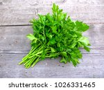 parsley bunch on wooden table... | Shutterstock . vector #1026331465