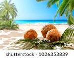 coconuts on the beach with a... | Shutterstock . vector #1026353839