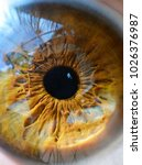eye very close | Shutterstock . vector #1026376987