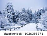 winter forest landscape in... | Shutterstock . vector #1026395371