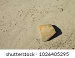 Small photo of Dinosaur Provincial Park, Alberta, Canada. Isolated rock on bare silty ground.