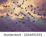 group of bohemian waxwings fly... | Shutterstock . vector #1026451531