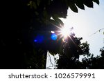 sun flare behind leaves    Shutterstock . vector #1026579991
