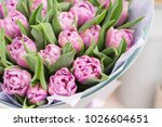 close up. beautiful luxury... | Shutterstock . vector #1026604651