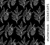 berries vector illustration....   Shutterstock .eps vector #1026651691