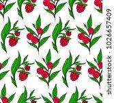 berries poster illustration.... | Shutterstock . vector #1026657409