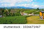 tea plantation in chiang rai ... | Shutterstock . vector #1026671467