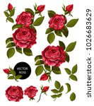 set of red roses and elements...   Shutterstock .eps vector #1026683629