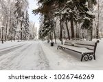 winter park with trees covered...   Shutterstock . vector #1026746269