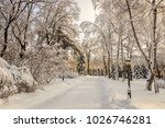 winter park with trees covered...   Shutterstock . vector #1026746281