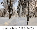 winter park with trees covered...   Shutterstock . vector #1026746299