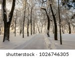 winter park with trees covered...   Shutterstock . vector #1026746305